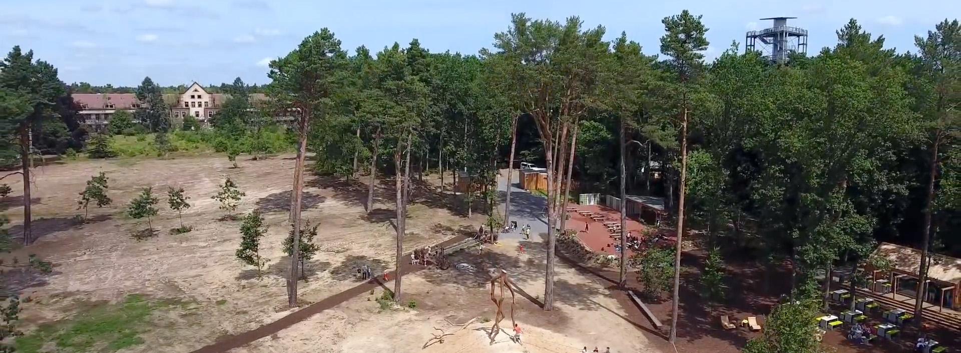 Barfußpark Beelitz-Heilstätten - von oben